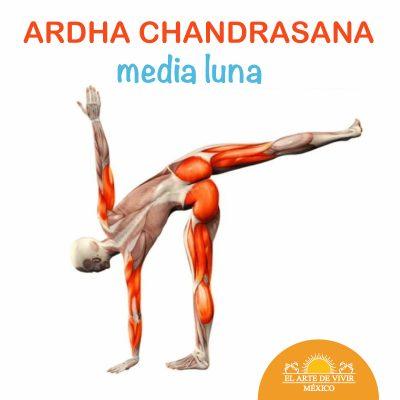 Yoga: Ardha Chandrasana
